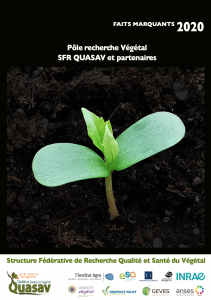 Rapport FM 2020 SFR Quasav