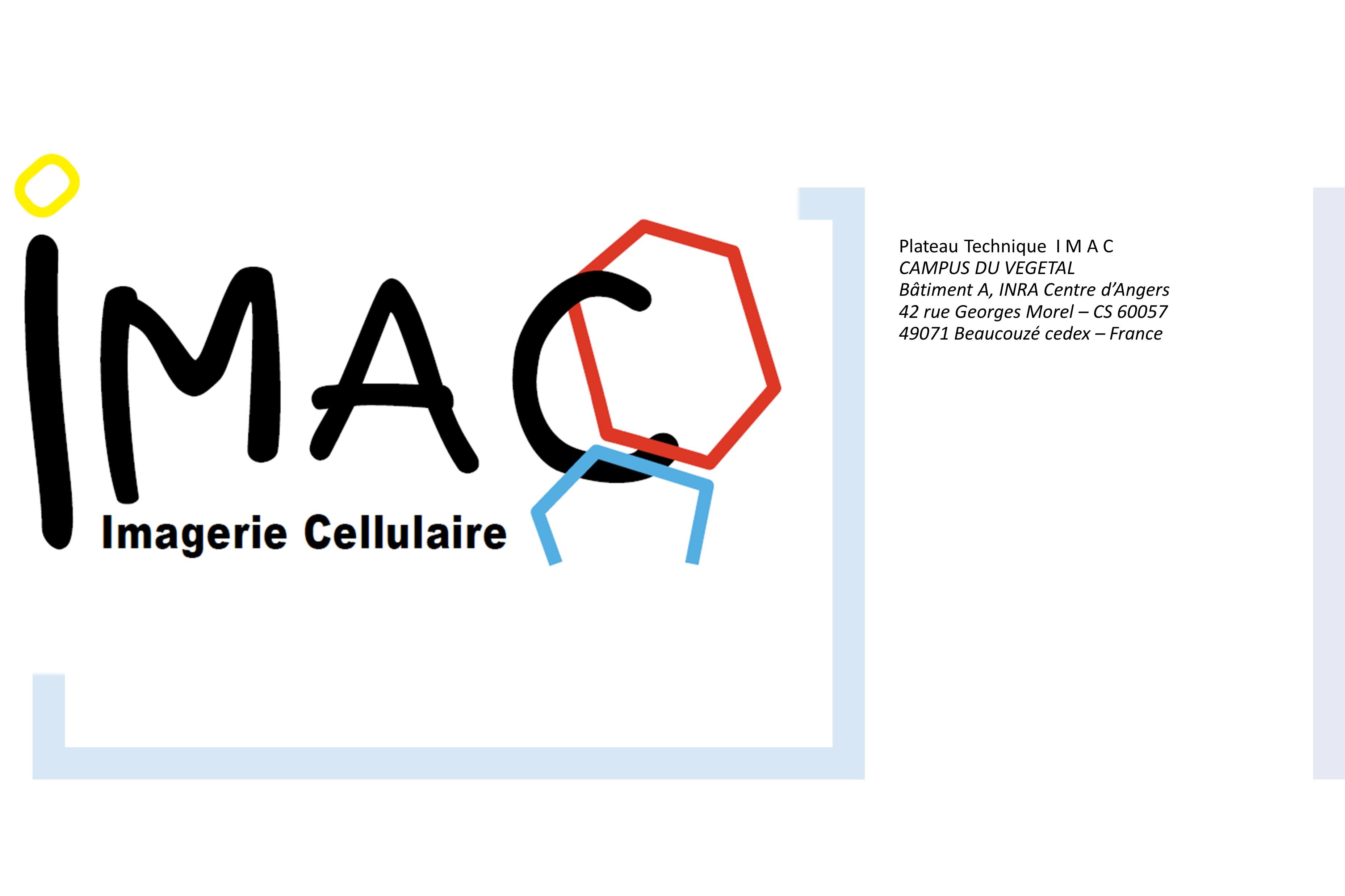 Logo Plateau TechniqueIMAC