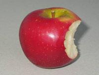 qualité pomme