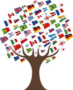 AAP mobilités internationales du RFI Objectif Végétal