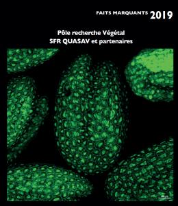 Faits Marquant 2019 - Pôle Recherche végétal - SFR QUASAV et partenaires