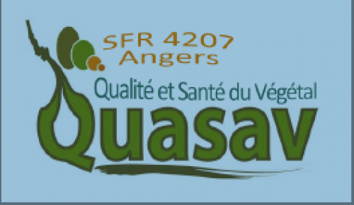 Présentation de la SFR Quasav